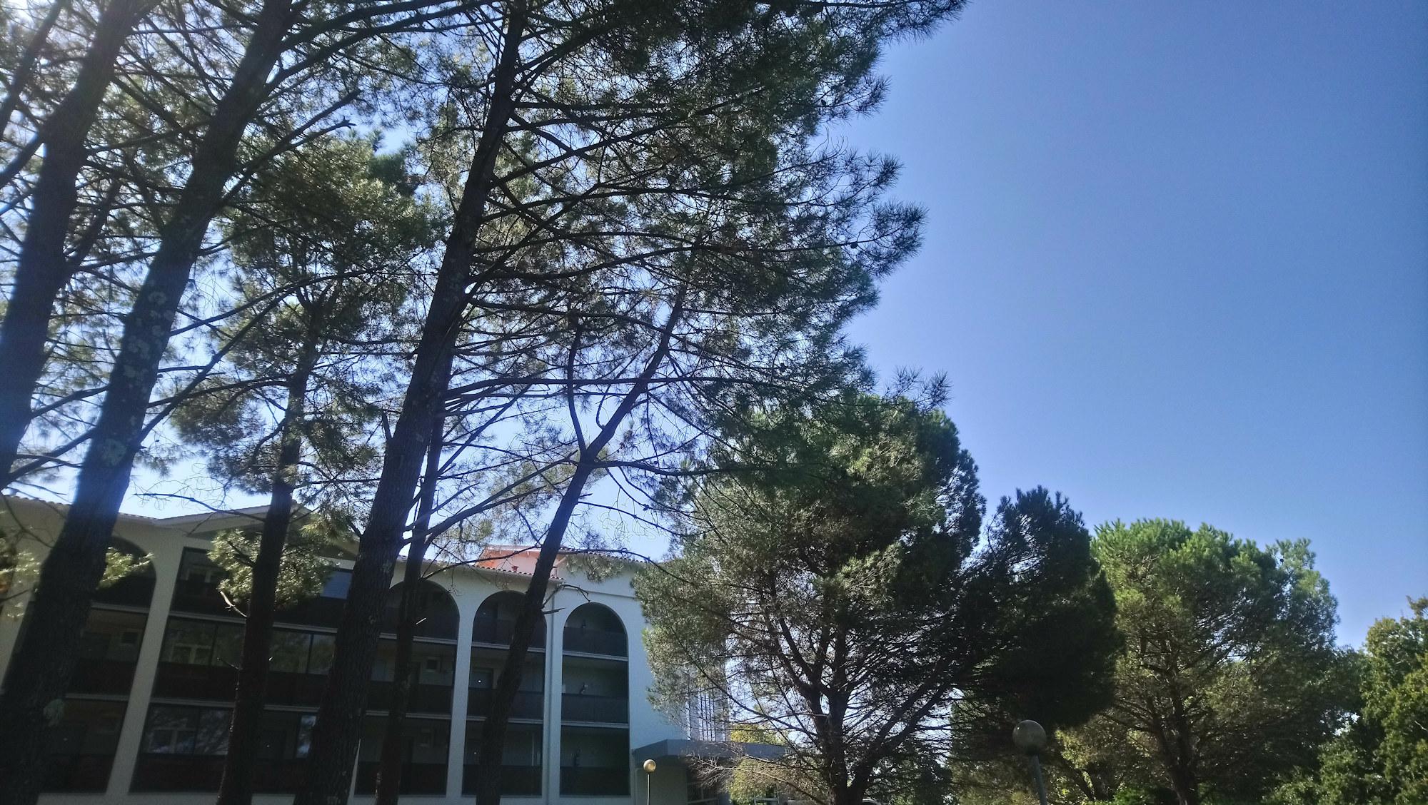 Hôtel Biarritz Pins